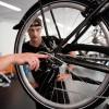Bijzonder fietstraject helpt werkzoekenden in zadel